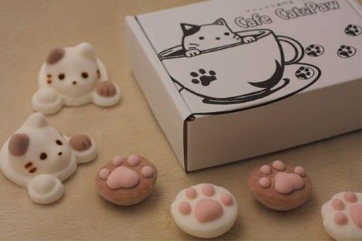 CafeCat Box