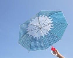 富士傘ふじさん