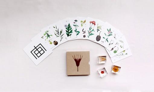 宙-Sola-キューブ ストーリーが書かれたカード