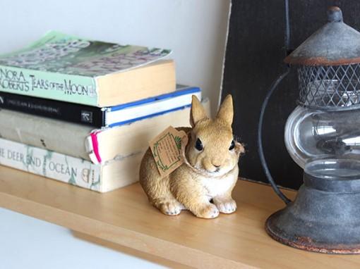 PET BANK ウサギ