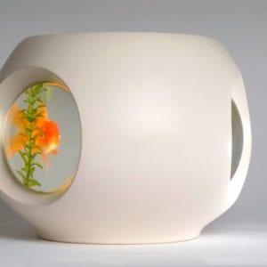 1984 Fish Bowl (フィッシュボウル)