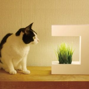 LED水耕栽培器 灯菜 Akarina14