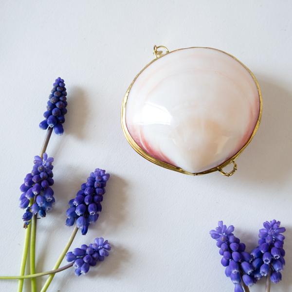 ルーツローズラディッシュ 貝殻の練り香水 イランイラン&グレープフルーツ